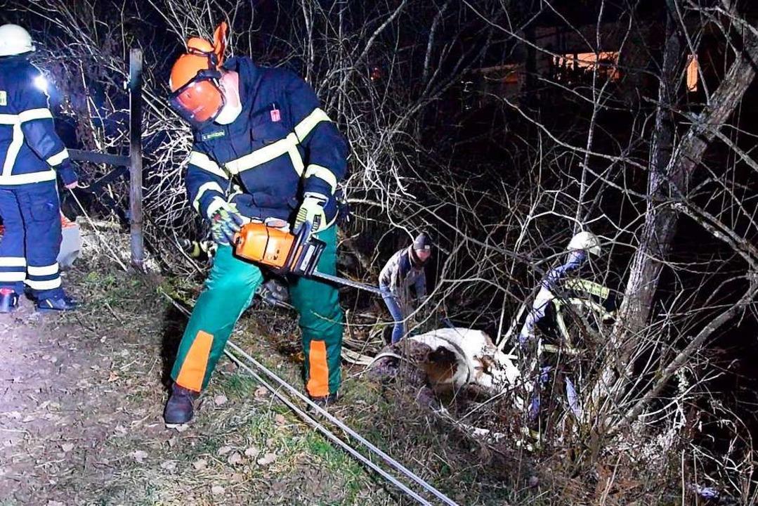 Die Feuerwehr musste sich im Gehölz erst einen Zugang freischneiden.  | Foto: Kamera24