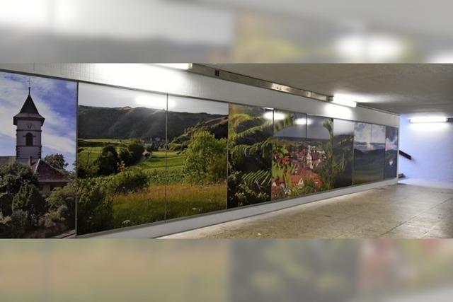 Landschaftspanoramen in der Unterführung