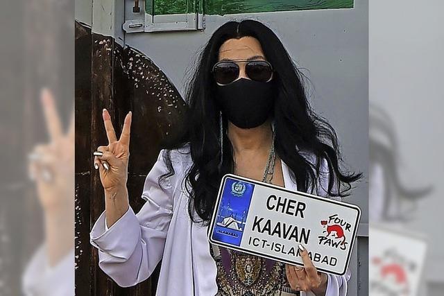 Cher begrüßt Kaavan am Flughafen