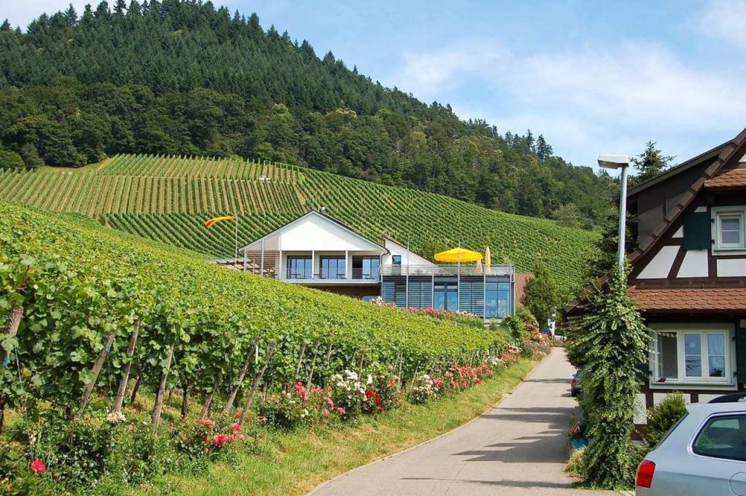 Das prachtvoll gelegene Weingut Schlos...t inmitten seiner 45 Hektar Rebfläche.  | Foto: hrö