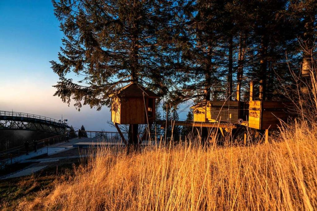 Die Baumhaus-Spielanlage auf der Bergstation ist für Kinder errichtet worden.    Foto: VAG Freiburg