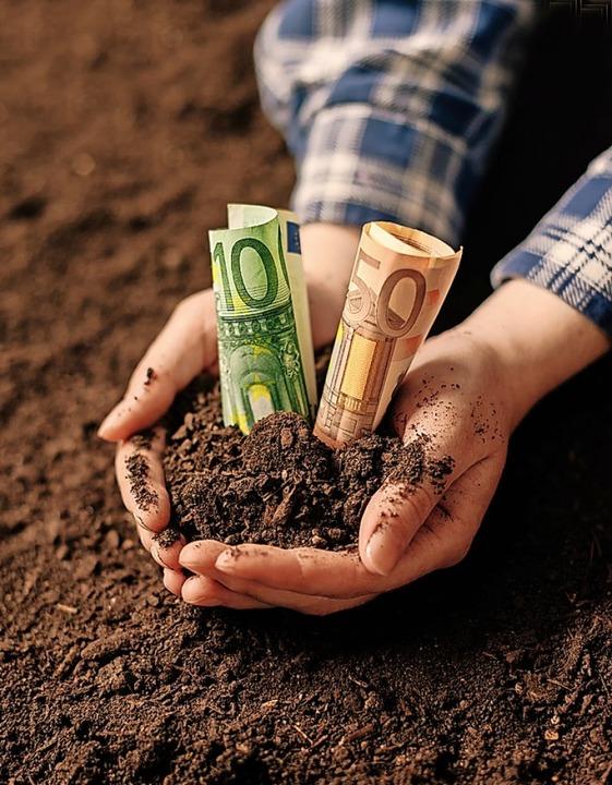 Die Steuer für bebaubare Grundstücke (...und weitere kommunale Steuern steigen.  | Foto: Igor Stevanovic (stock.adobe.com)