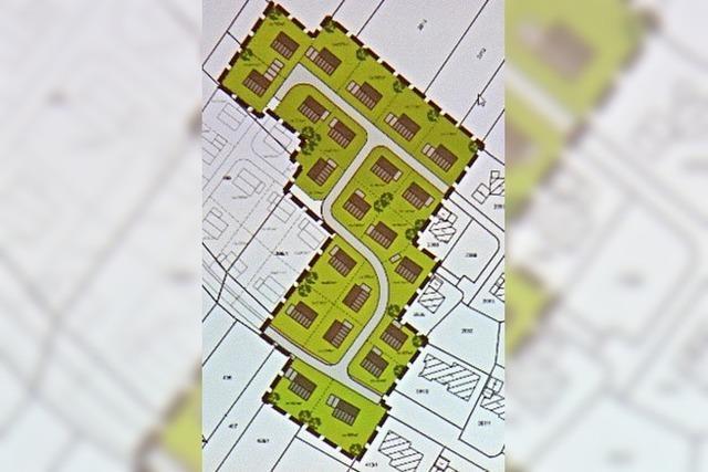 Platz für 20 neue Wohnhäuser
