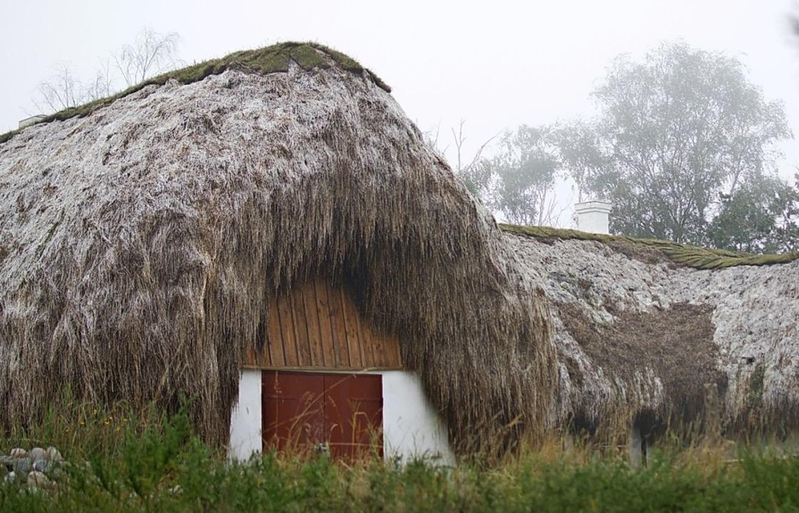 Noch etwa 30 Häuser mit Seegrasdächern gibt es in Læsø.    Foto: Anna-Theresa Bachmann