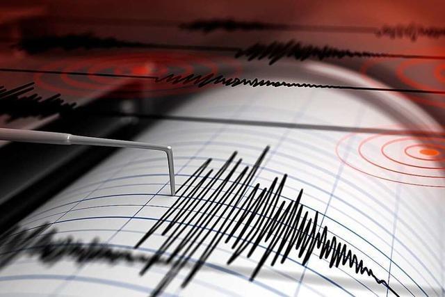 Leichtes Erdbeben erschüttert Straßburg im Morgengrauen