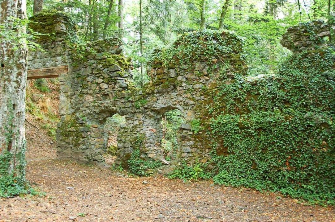 Die Burgruine Wiesneck ist seit Jahren überwuchert.    Foto: Karlheinz Scherfling