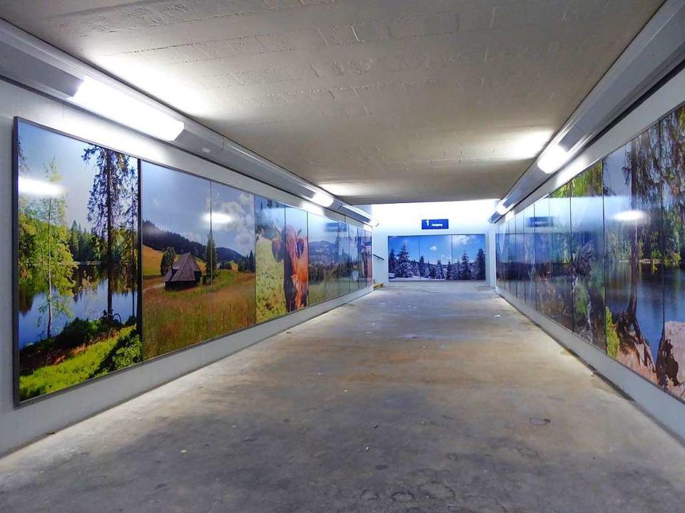 Blick in die Unterführung mit den neue... Bilder aus Hinterzarten und Umgebung.  | Foto: Peter Stellmach