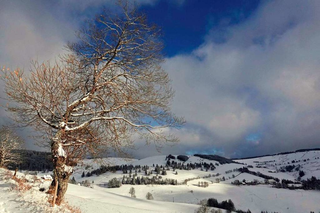 Schnee im Münstertal: Blick Richtung Schauinslandhalde über Stohren.  | Foto: Rainer Dünzen