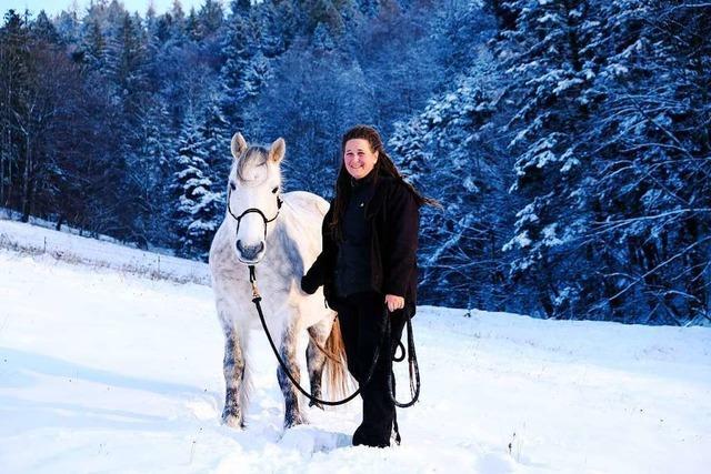 Pferde auf der Winterweide – Tierquälerei oder artgerechte Haltung?