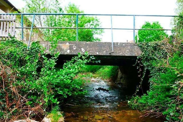 Die Sanierung der Brücke am Johann-Daniel-Schöpflin-Weg wird günstiger