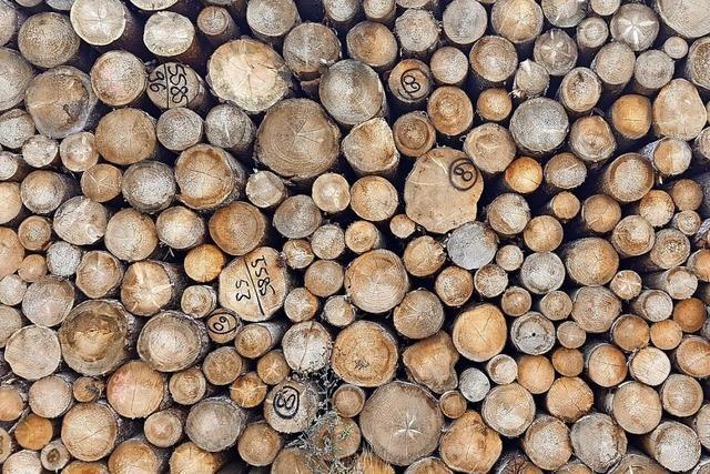 Viel Holz fürs Haus