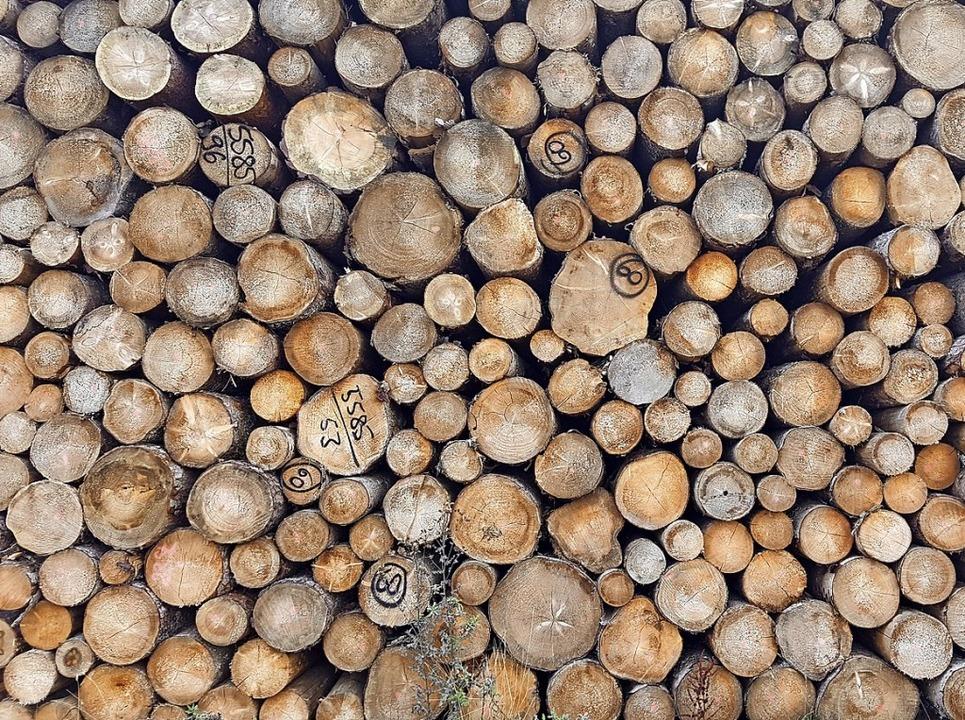 Holzpolter am Wegesrand: Am Baustoff H...rrscht zumal in Südbaden kein Mangel.   | Foto: Pro Holz Schwarzwald