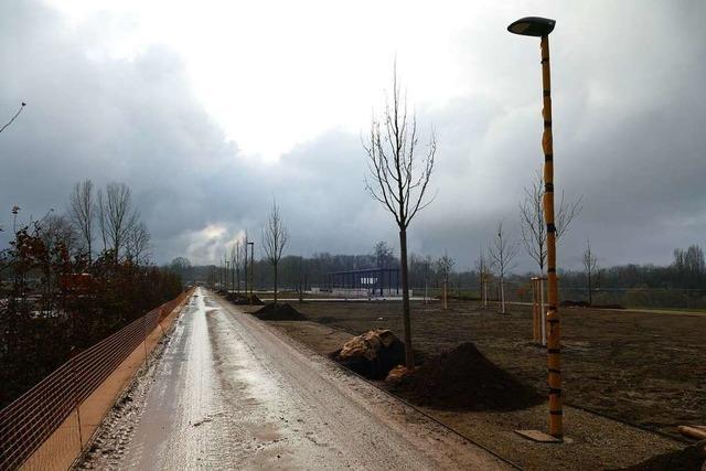 Wie es zurzeit auf dem Landesgartenschaugelände in Neuenburg aussieht