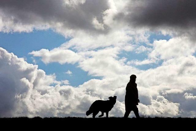 Die Hundesteuer in Rheinfelden wird steigen