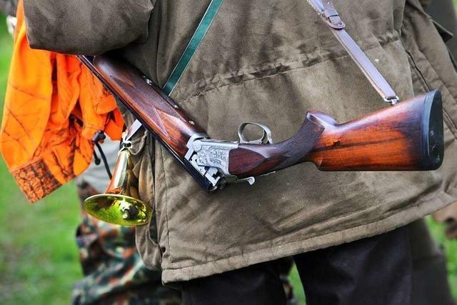 Ortschaftsrat mahnt, dass auf eine Jagd im Wald besser hingewiesen werden muss