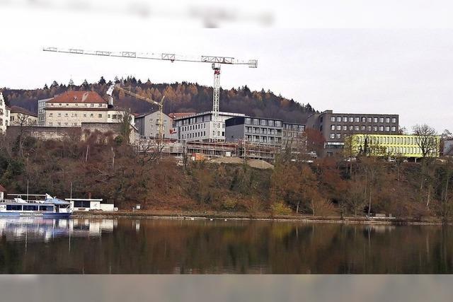 Neue Perspektive an der Rheinhalde in Waldshut