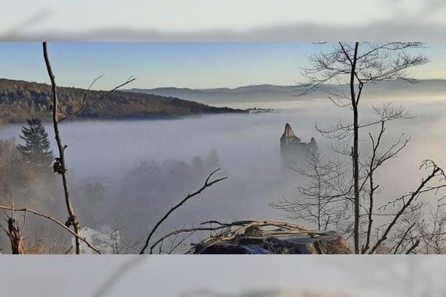 Teninger Burgruine versteckt sich im Nebel