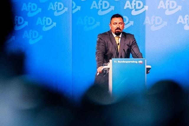 AfD-Landesvorstand will Mandic aus der Partei ausschließen