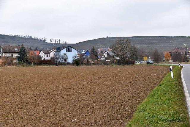 Am Ortsrand von Burkheim entsteht ein kleines Baugebiet