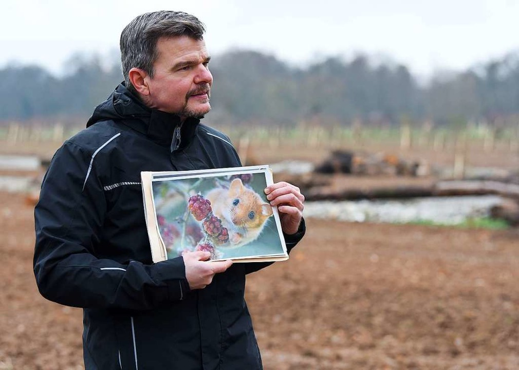 Der stellvertretende Amtsleiter des Um...d Schaich mit dem Bild einer Haselmaus    Foto: Rita Eggstein