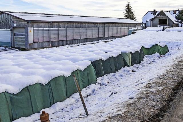 Grünes Licht für Stallanbau