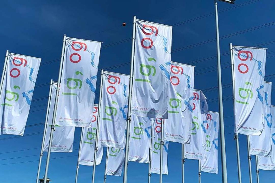 Die Landesgartenschau findet 2032 in Offenburg statt.  | Foto: Helmut Seller