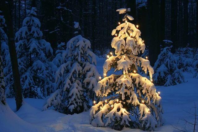 Weiße Weihnachten gibt's in Südbaden etwa alle fünf Jahre