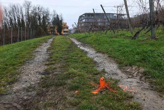 In Bad Bellingen soll Anfang 2021 mit dem Bau eines Hochwasserentlastungskanals begonnen werden