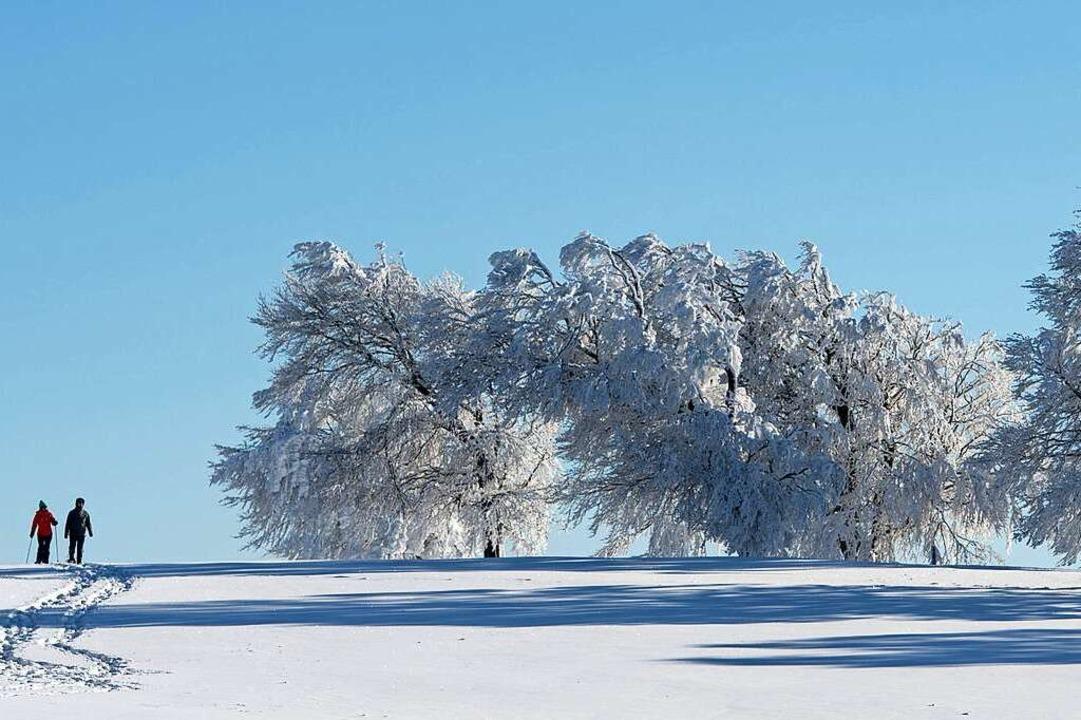 Wintermärchen: Schneeschuhwandern abseits der Massen im Schwarzwald  | Foto: Patrick Seeger