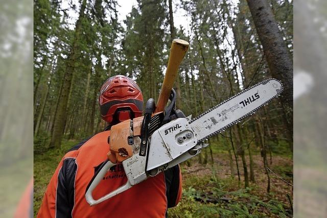 200 000 Euro Miese für Wehrer Forst