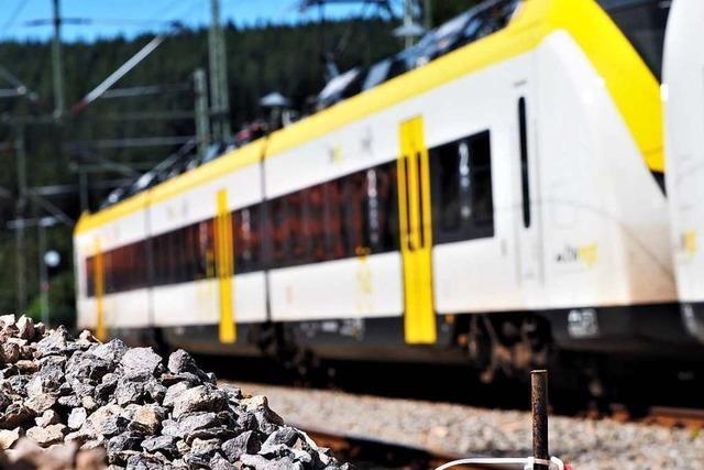 Zwischen Titisee und Seebrugg rollen wieder Züge