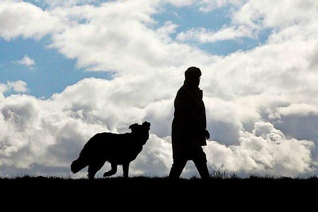 Binzen hat im Kreis Lörrach die niedrigste Hundesteuer