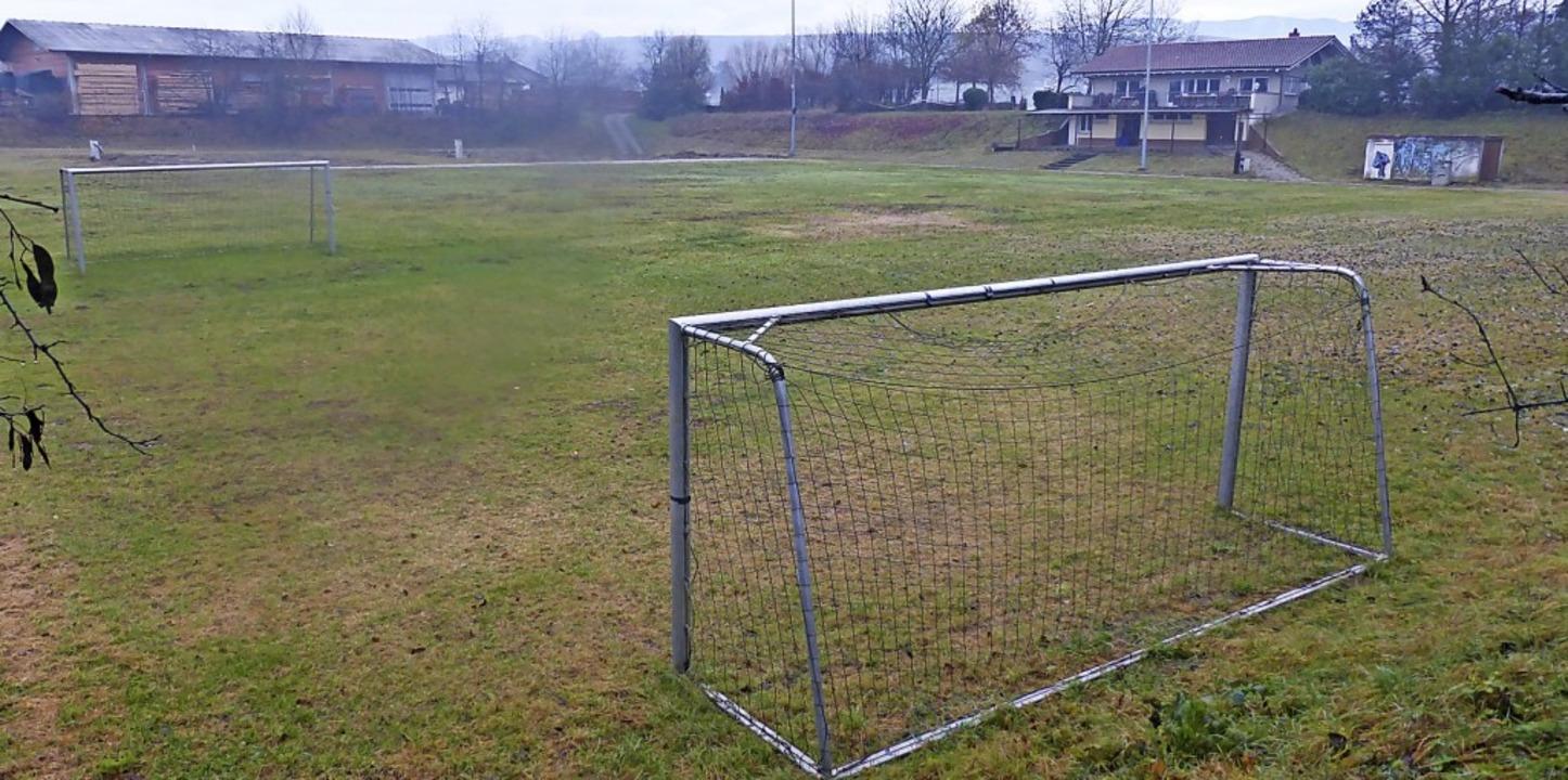Das ehemalige Sportgelände in Norsingen soll Gewerbegebiet werden.  | Foto: Andrea Gallien