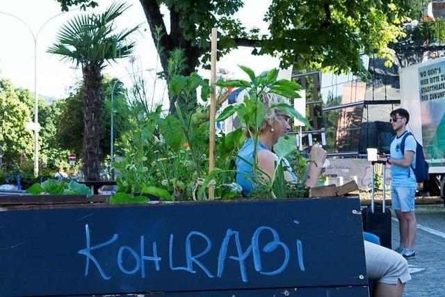 Stadt zum Anbeißen: Wie Urban Gardening in Freiburg funktioniert