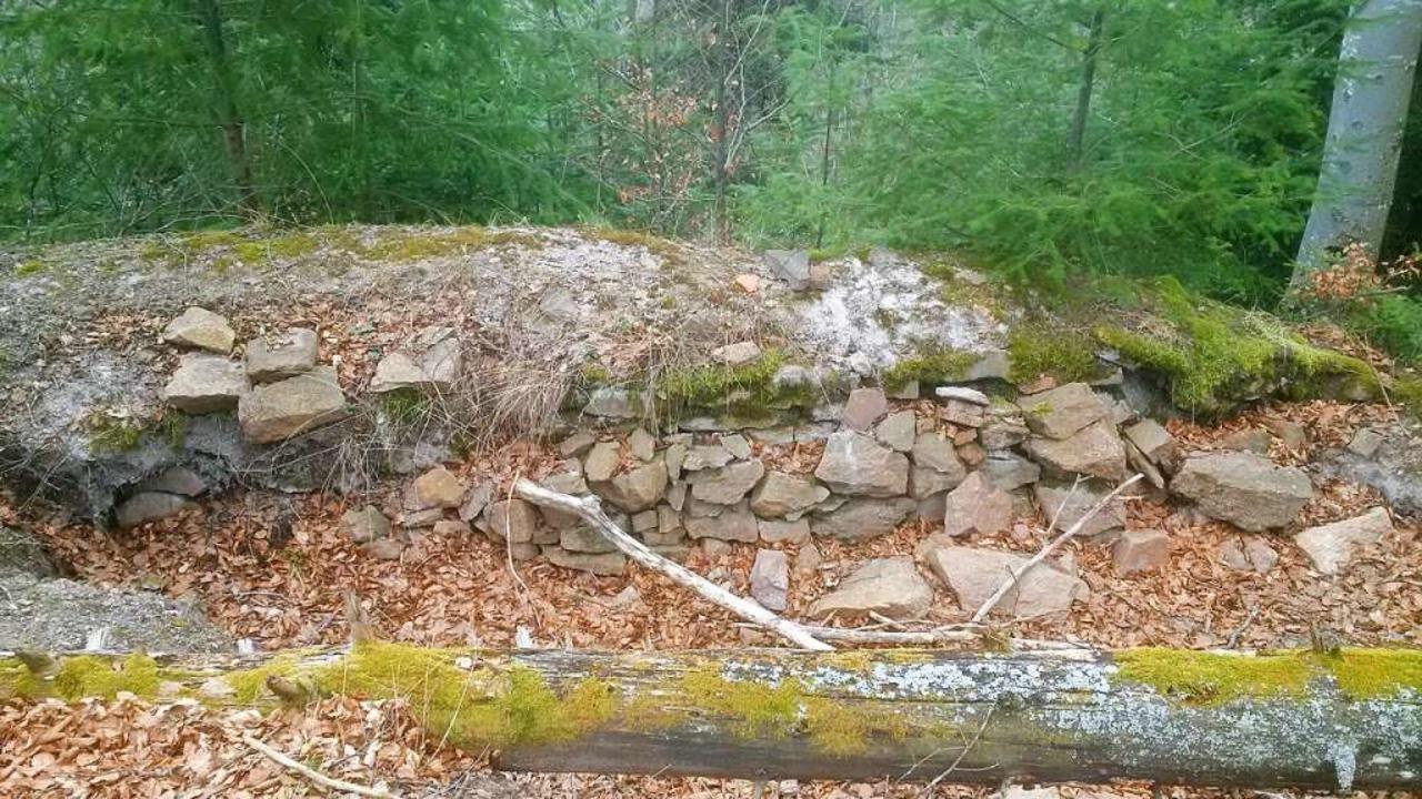 Spurenreste der Ruine Burgholz  | Foto: Wilhelm Tholen