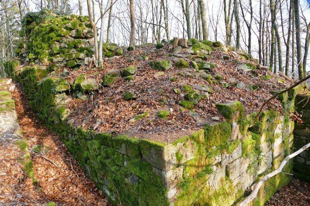 Moosbewachsen: die Ruine Fernegg alias Turnhölzle  | Foto: André Hönig