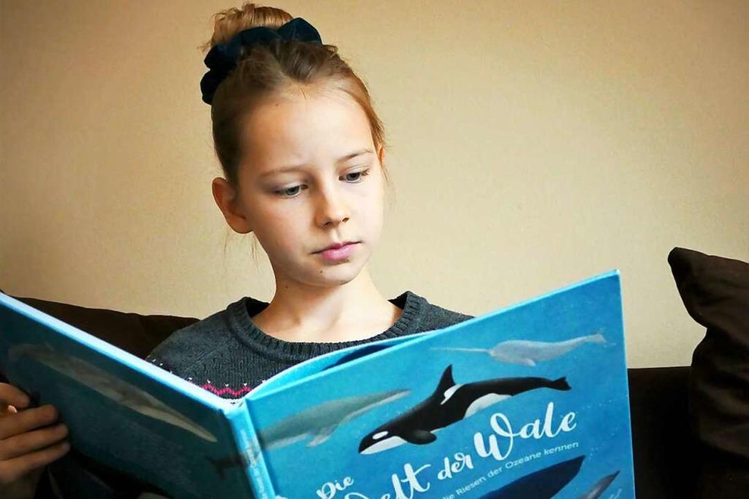 Perfekte Mischung aus Information und Ästhetik: Die Welt der Wale.  | Foto: Silke Kohlmann