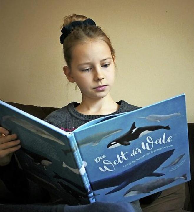 Perfekte Mischung aus Information und Ästhetik: Die Welt der Wale    Foto: Silke Kohlmann