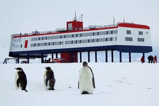 Ein Offenburger forscht in der Antarktis