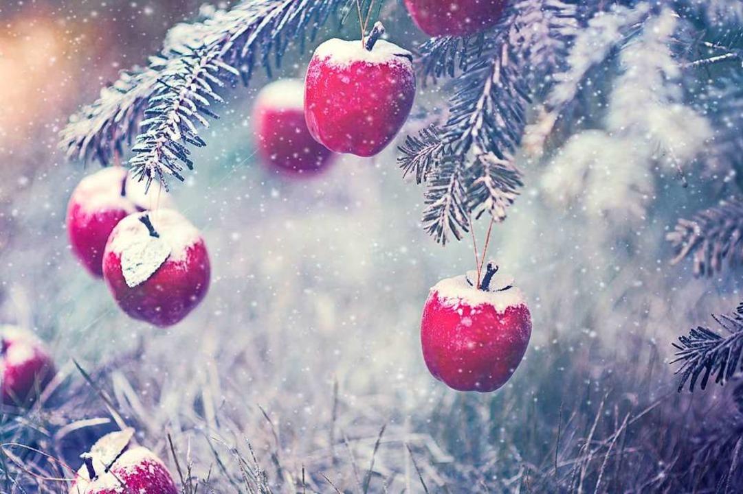 Der Apfel ist ein klassischer  Weihnachtsbaumschmuck.  | Foto: ALLA Simacheva