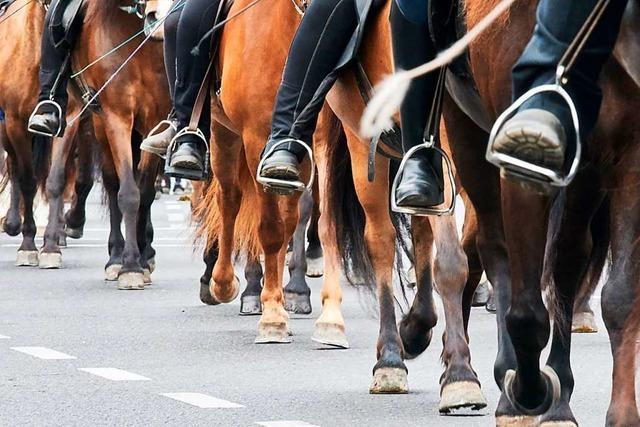 Gegen eine mögliche Pferdesteuer in Rheinfelden regt sich Widerstand