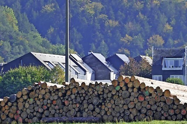 Trockenlager für Stammholz