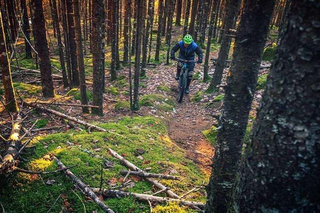 Verein will legale Mountainbike-Singletrails im Kreis Lörrach auf den Weg bringen