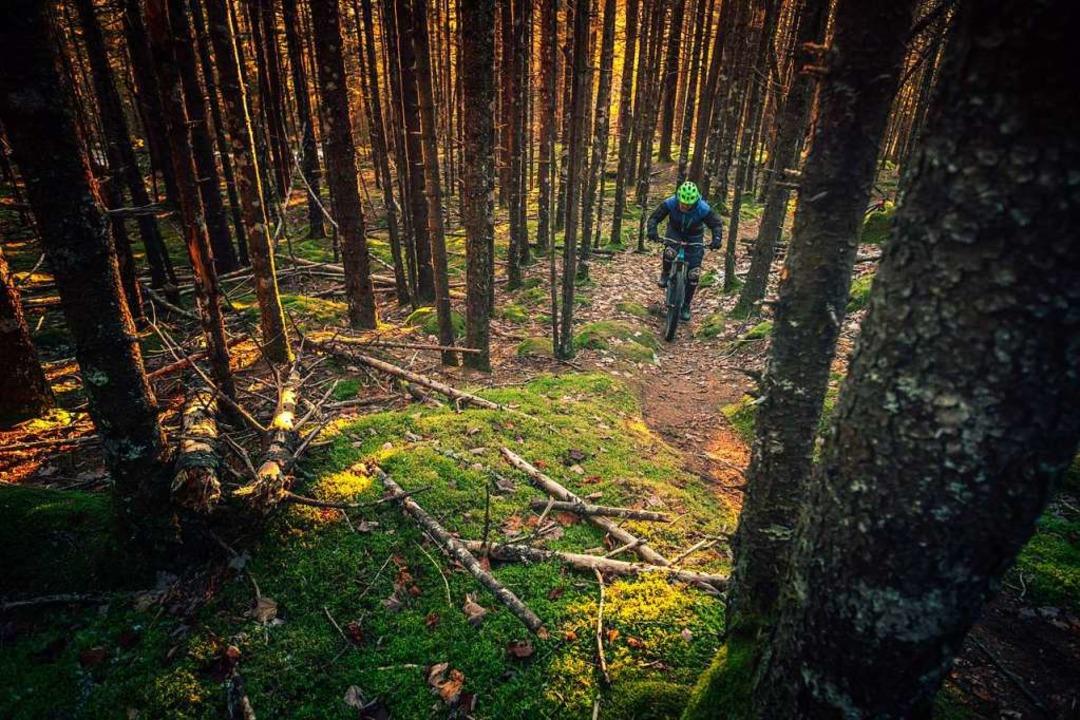 In Baden-Württemberg dürfen Wege, die ...n der Ausübung des Sports ausgebremst.  | Foto: Tim Foster (Unsplash)