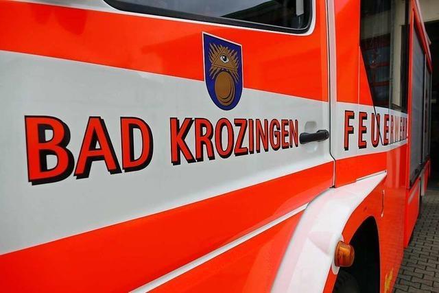 In Bad Krozingen startet Hilfskonvoi nach Kroatien