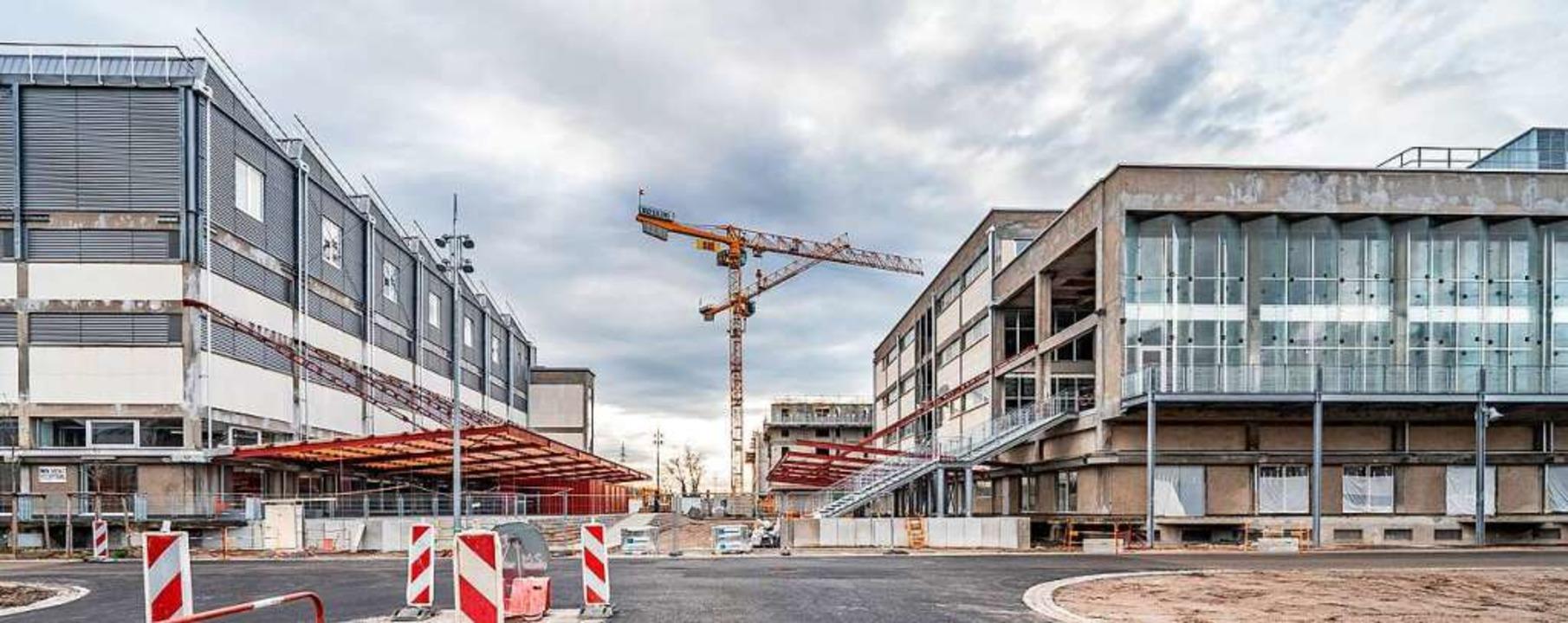Bereits 2018 hat auf dem Coop-Areal im...ngsbereich für die Straßburger Museen.  | Foto: bz
