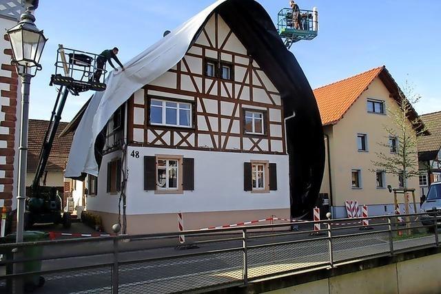 Friesenheim in Bildern