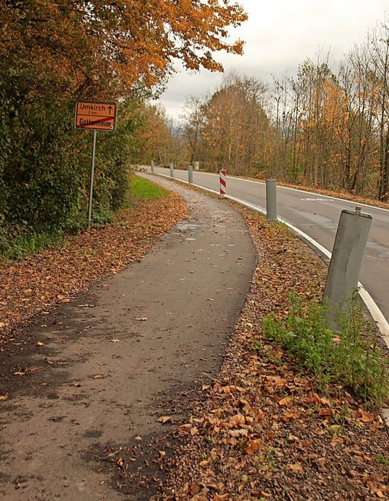 Ein Schildbürgerstreich des Landes: de...le   Radweg an der Straße nach Umkirch  | Foto: Mario Schöneberg