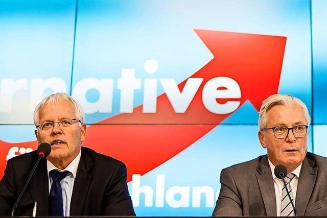 Tandem-Bewerbung um AfD-Spitzenkandidatur