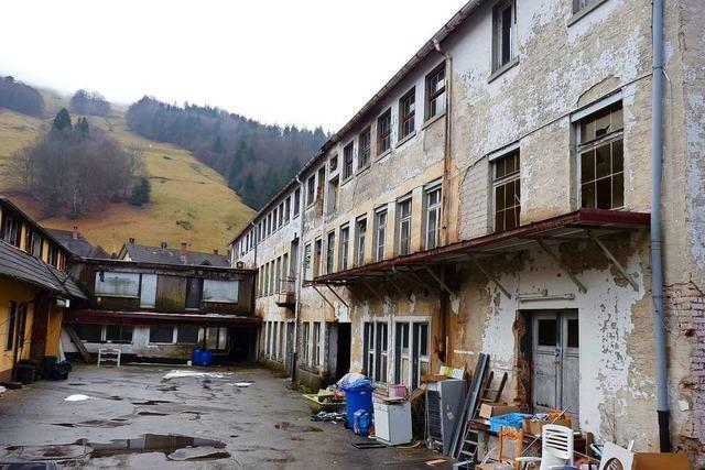 Fledermäuse verzögern Abbruch der Metallwerke Todtnau